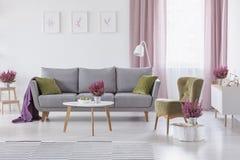 Canapé cinzento com coxins verdes e cobertura roxa na foto real da sala de visitas branca interior com mesa de centro imagens de stock royalty free