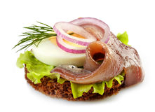 Canape with anchovy and egg Stock Image