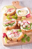 Canape with cheese and radish Stock Photo