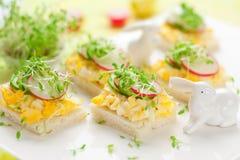 Canape con l'uovo, il cetriolo, i ravanelli ed il crescione Fotografia Stock