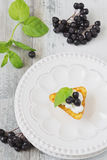 Canape with cottage cheese and black berries of mountain ash Stock Images