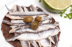 Canape of granary bread with sardines and capers Royalty Free Stock Photo