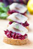 Canape herring with beets on rye toast, tasty starter, appertise Stock Images