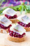 Canape herring with beets on rye toast, tasty starter, appertise Stock Photography
