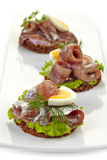 Canapes with anchovies and egg Stock Photography