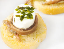 Canapes with anchovy and cheese with spices Stock Photos