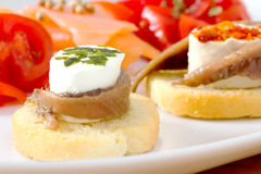 Canapes with anchovy and cheese with spices Royalty Free Stock Images