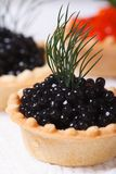 Canapes with black sturgeon caviar fish. macro Stock Image