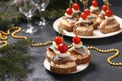 Canapes com arenques, queijo, os ovos de codorniz e os tomates de cereja salgados no pão torrado do centeio imagens de stock
