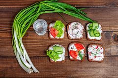 Canapes com pepino, rabanete e tomate Cebola verde vodka A imagens de stock royalty free