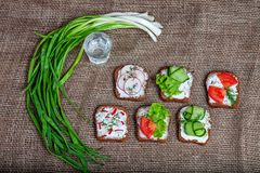 Canapes with cucumber, radish and tomato. Green onion. A glass o. F vodka. Top view. The concept of food and alcohol Stock Image