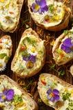 Canapes med eddible blommor och bondbönahummus Royaltyfri Fotografi