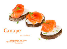 Canapes med laxen Arkivfoton