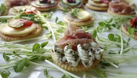Canapes On Sprouts Stock Photos
