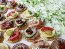 Canapes and Sprouts. Royalty Free Stock Photography