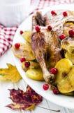 Canard avec des pommes et des canneberges Photo stock