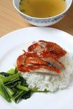 Canard avec du riz Image libre de droits