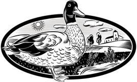 Canard dans le cadre ovale illustration de vecteur