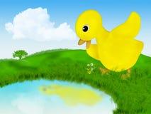 Canard de chéri et sa réflexion dans le lac Illustration de Vecteur