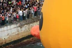 Canard en caoutchouc à Hong Kong Photos stock