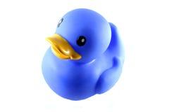 Canard en caoutchouc bleu images libres de droits