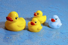 Canard en caoutchouc camouflé Images libres de droits