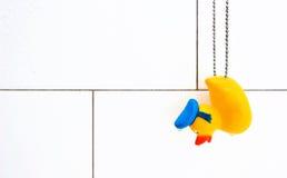 Canard en caoutchouc dans la stalle de douche blanche humide Photographie stock libre de droits