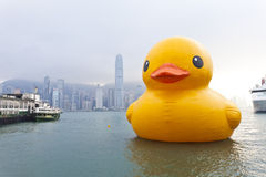 Canard en caoutchouc en Hong Kong Photo libre de droits