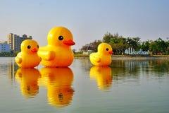 Canard en caoutchouc géant Photo stock