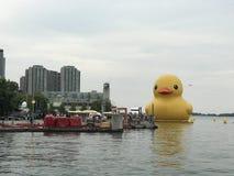 Canard en caoutchouc géant Photographie stock libre de droits