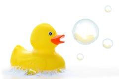Canard en caoutchouc jaune Images libres de droits