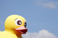 Canard en plastique jaune Photos libres de droits