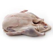 Canard entier cru Photo libre de droits