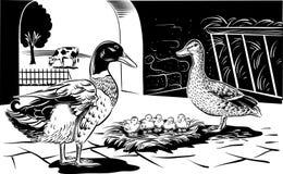 Canard femelle avec des poussins illustration de vecteur