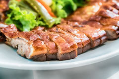 Canard rôti, type chinois Sally peu profond de depth-of-field Images stock
