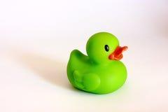 Canard se baignant vert Images stock
