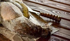 Canard tué avant la cuisson images libres de droits