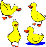 Canards illustration libre de droits