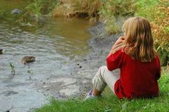 Canards alimentants de fille Photos libres de droits