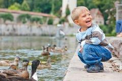 Canards alimentants mignons de petit garçon Photo libre de droits