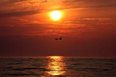 Canards au lever de soleil photos stock