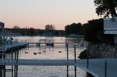 Canards aux docks sur le lac Delavan, le Wisconsin au crépuscule photographie stock