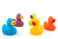 Canards colorés Photographie stock