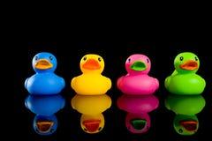 Canards colorés sur le noir Photo libre de droits