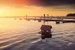 Canards dans l'eau et la maison Photos libres de droits