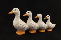 Canards dans une rangée Photographie stock libre de droits