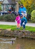 Canards de alimentation d'une famille indienne chez Bourton sur l'eau, Angleterre Images stock