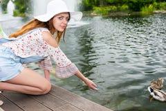 Canards de alimentation de femme dans un étang Photos stock