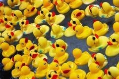 Canards en caoutchouc Photographie stock libre de droits
