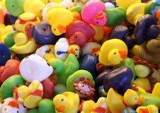 Canards en caoutchouc Photo stock